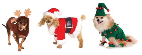 Dog Christmas Outfits